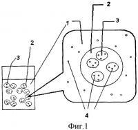 Патент 2436559 Косметическое средство накожного применения и способ его получения