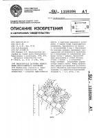 Патент 1359398 Биологическая застройка нижнего бъефа берегозащитного сооружения