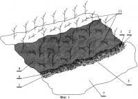 Патент 2436893 Способ укрепления берега от разрушающего воздействия водных животных