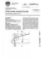 Патент 1662592 Устройство для развлечений