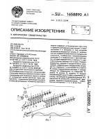 Патент 1658890 Сепаратор зернового вороха