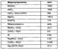 Патент 2636518 Косметическое применение дедифференцированных растительных клеток