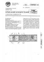 Патент 1789587 Фильтрующая фашина