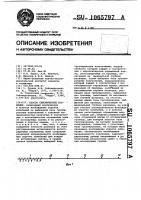 Патент 1065797 Способ сейсмической разведки
